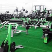 Sala Cardiovascular y Musculación